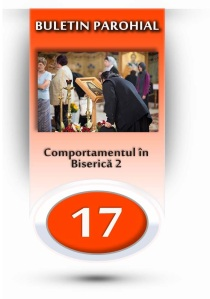 nr.17 - comportamentul in Bis