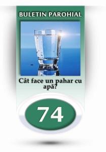 nr-74-cat-face-un-pahar-cu-apa
