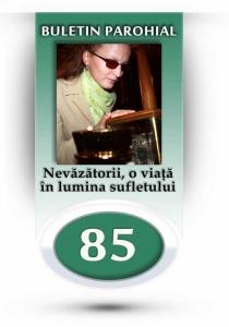 nr-85-nevazatorii-o-viata-in-lumina-sufletului