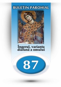 nr-87-ingerul-varianta-diafana-a-omului